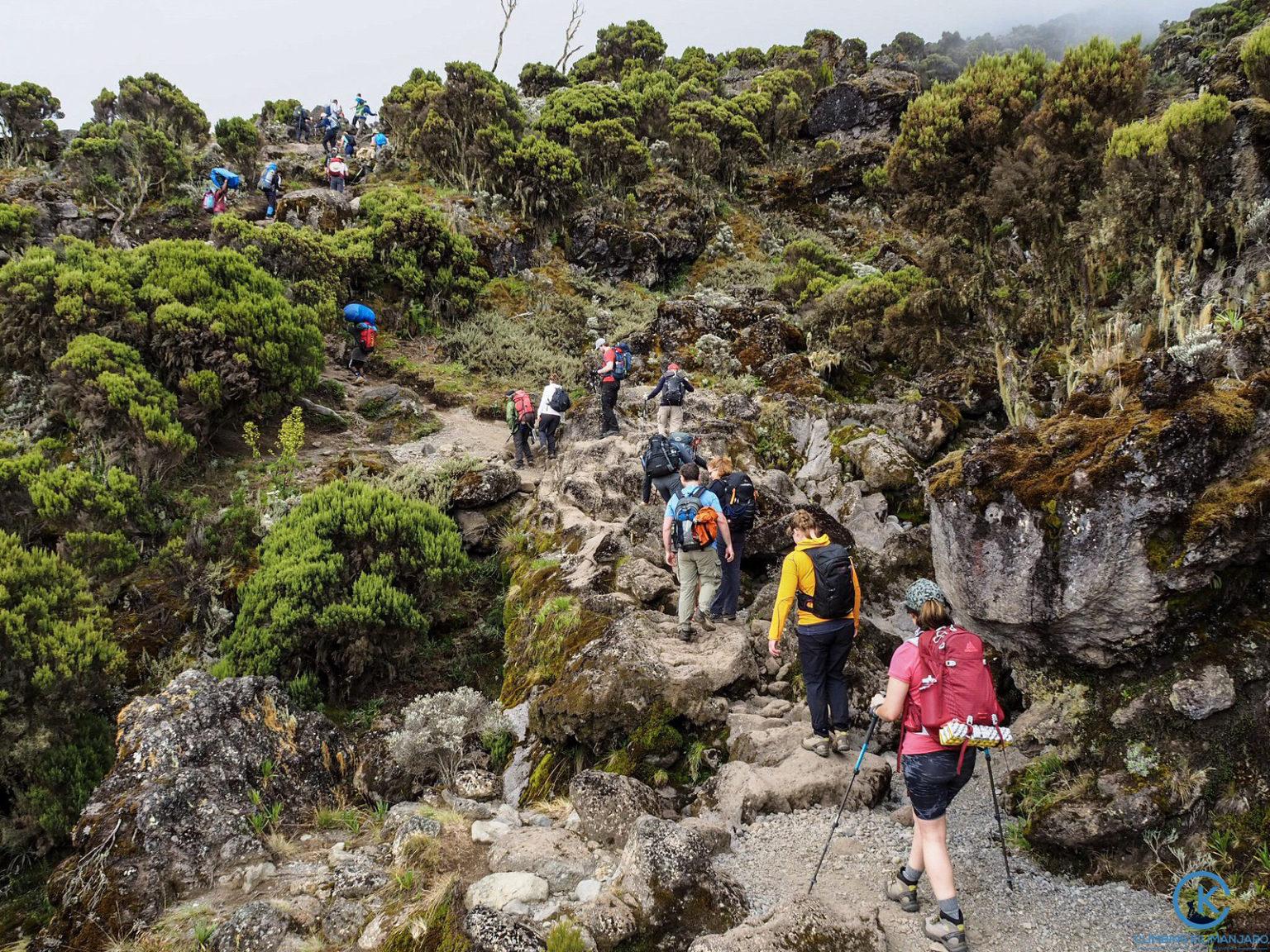 climb Kilimanjaro how many days